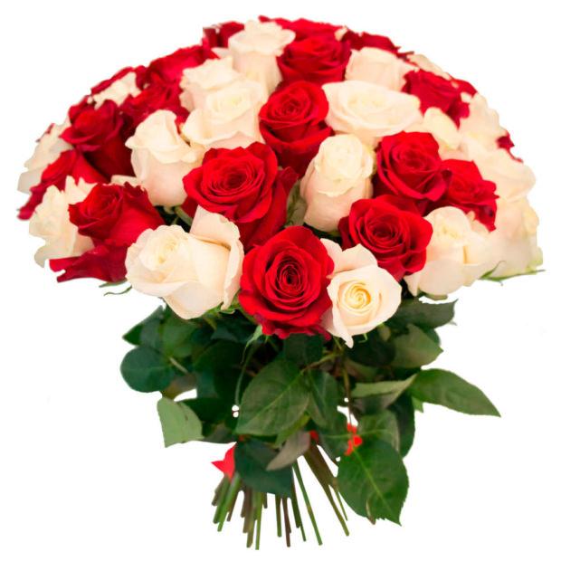 Розы Эквадор микс 1